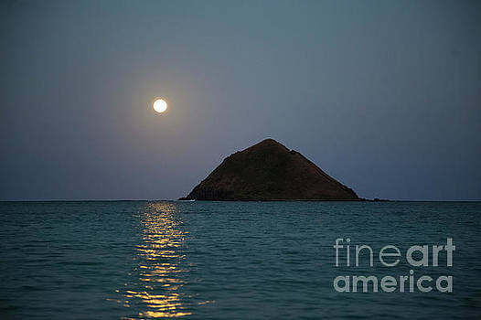 Moonrise over Moku Iki by Charmian Vistaunet