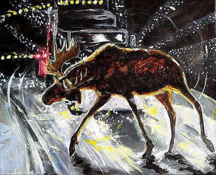 Jenn Cunningham - Moose Crossing