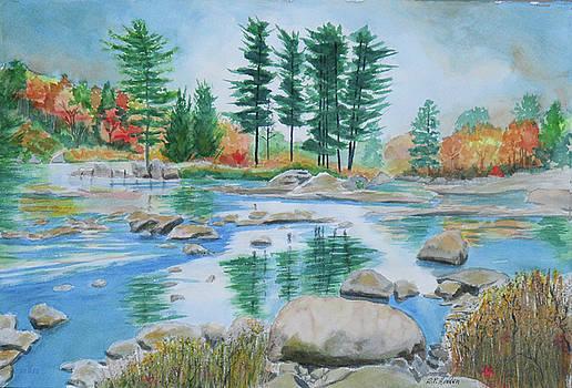 Moose River Low Water by Robert P Hedden