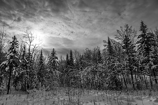 Morin-Heights black and withe by Nick RUXANDU