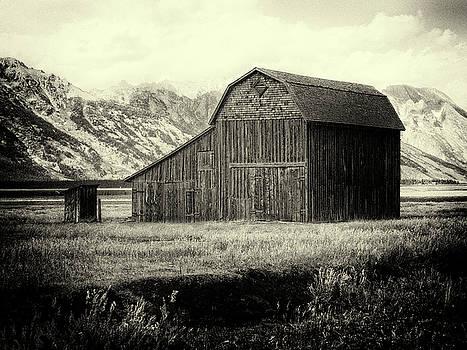 Mormon Row Barn No 1 by Sandra Selle Rodriguez