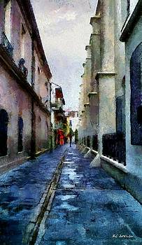 Morning After the Rain by RC deWinter