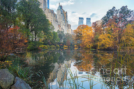 Morning at Central Park - Manhattan by Jacki Soikis