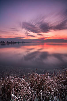Morning contrast by Davorin Mance