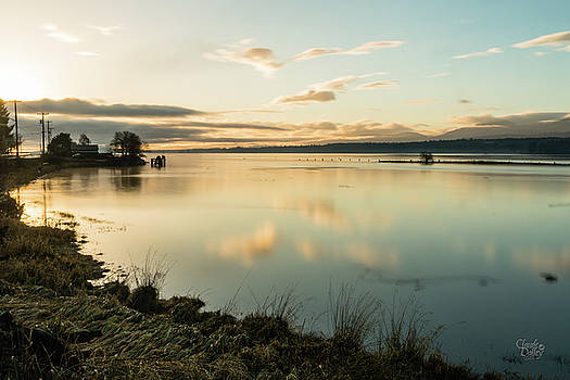Morning Estuary by Claude Dalley