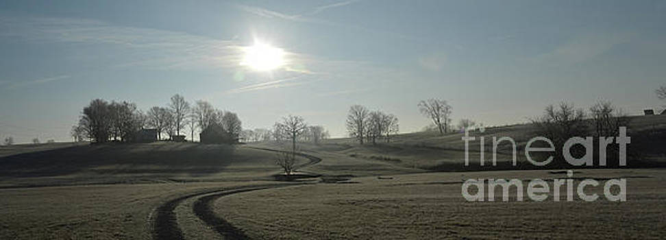 Morning frost over Shelbyville KY by Charles M Williams