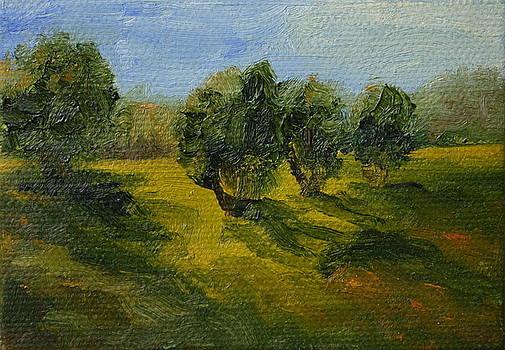 Morning Glen by Martha Layton Smith