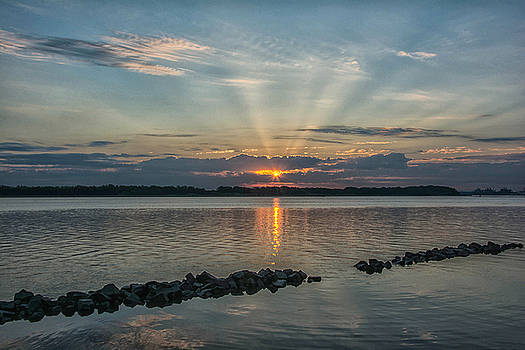 Morning Glory by Donnie Smith