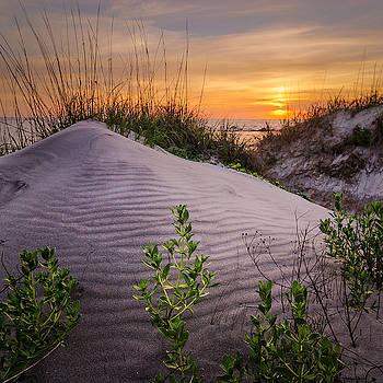 Morning Glow by Steve DuPree