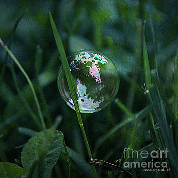 Morning In A Bubble.. by Rene Crystal
