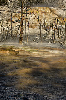 Sandra Bronstein - Morning Light At Mammoth Terrace