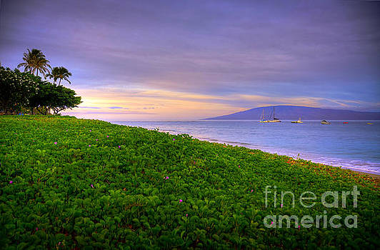 Morning Maui Light  by Kelly Wade