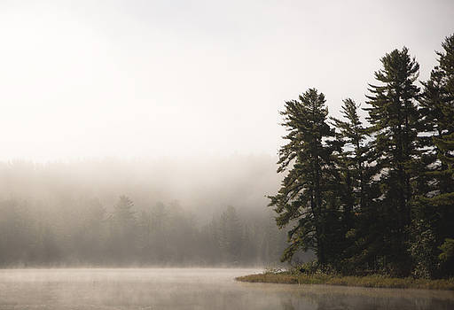 Morning Mist on Mew Lake by Cale Best