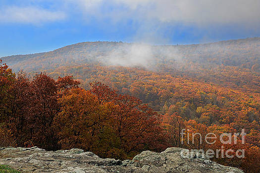 Morning mist on Skyline Drive at Franklin Cliffs Overlook by Louise Heusinkveld