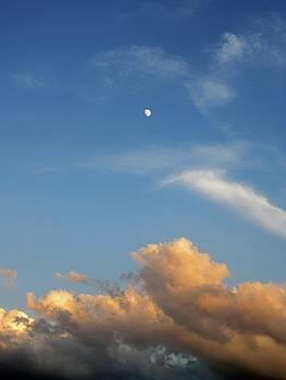 Morning Moon by Gordon Wendling