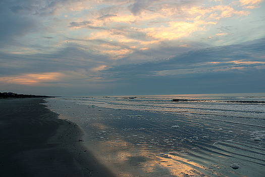 Rosanne Jordan - Morning on the Beach