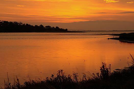 Martina Fagan - Morning on the Estuary 6.45