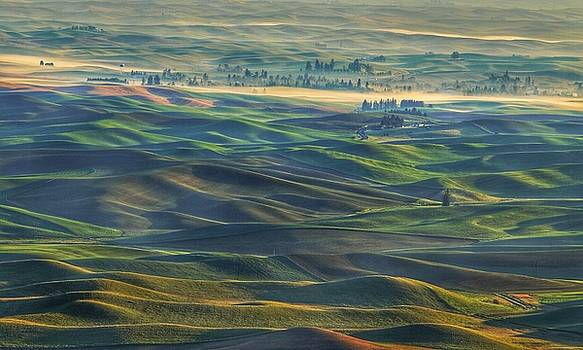 Morning on the Palouse by Lynn Hopwood