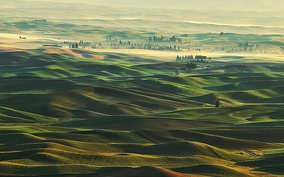 Morning on the Palouse with haze by Lynn Hopwood