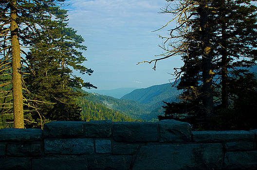 Morning ride in the Smokeys by Sheri Heckenlaible
