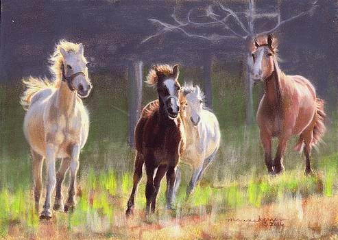 Morning Run by Melissa Herrin