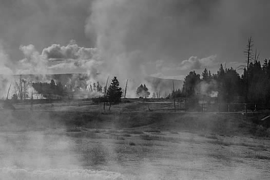 Morning Steam  by Maik Tondeur