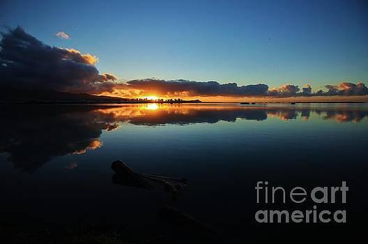 Morning Sun by Craig Wood