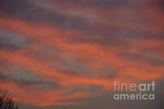 Morning Sunrise 3  by Ruth Housley