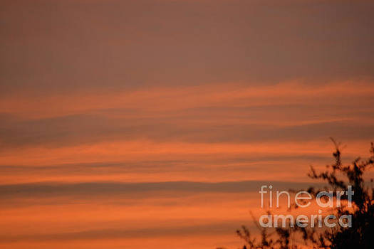 Morning Sunrise by Ruth Housley