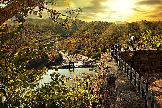 Morning Sunshine by Lj Lambert
