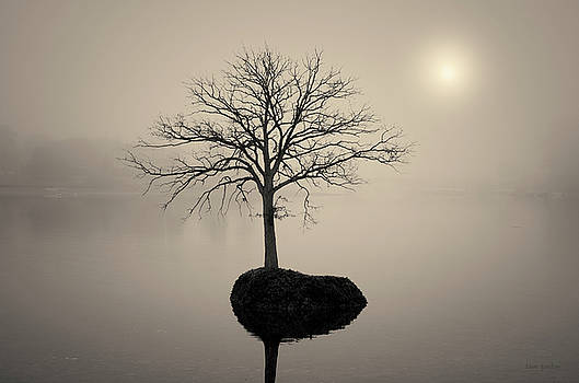 David Gordon - Morning Tranquility Toned
