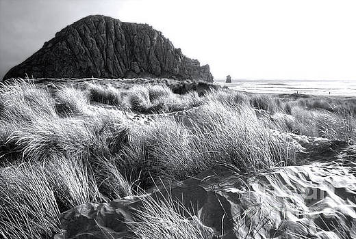 Morro Bay - Black and White by Gregory Dyer
