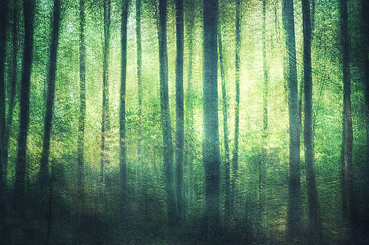 Mortwood Forest in green by Violet Gray