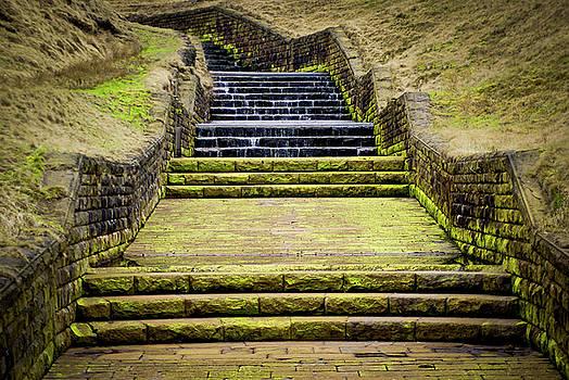 Moss covered steps by Paul Jarrett