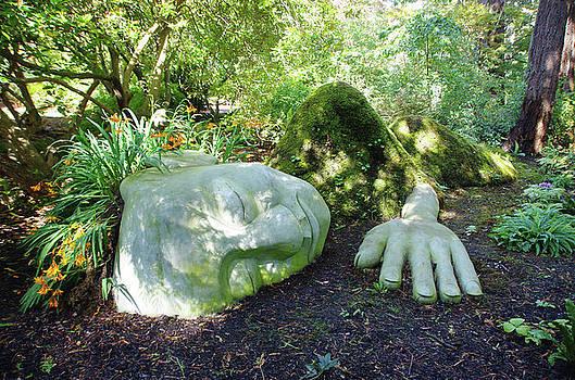 Moss Lady by Marilyn Wilson