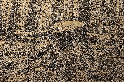 Terry Perham - Moss On The Stump