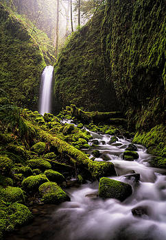 Mossy Grotto by Brian Bonham