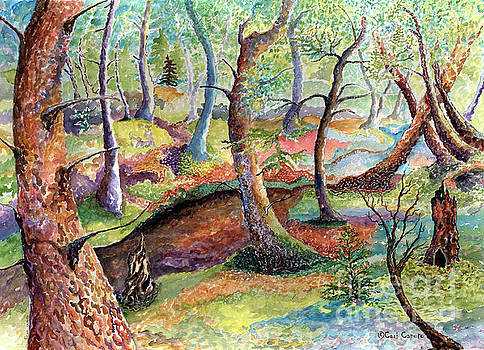 Mossy Trail by Cori Caputo