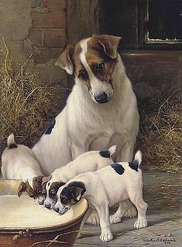 Mother and pups 1891 by Allen Beilschmidt