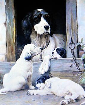 Mother and pups by Allen Beilschmidt