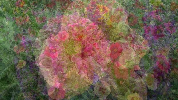 Mottled Pink Collage Pop by Kathy Barney