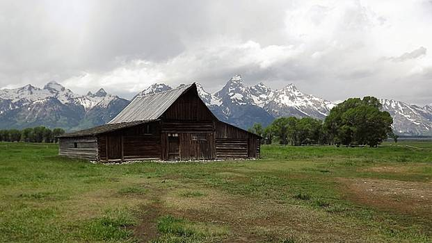 Moulton Barn in Antelope Flats Wyoming by Barkley Simpson