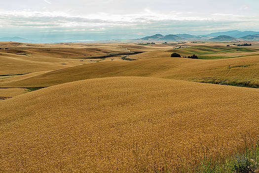 Mounds Of Grain by Claude Dalley