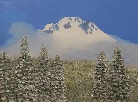 Mount Hood Snowfall by Dorothy Merritt