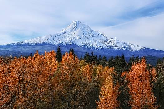 Mount Hood with Fall colors  by Lynn Hopwood