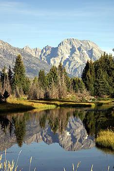 Marty Koch - Mount Moran Reflections