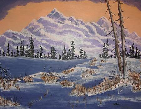Mountain and snow by David Bartsch