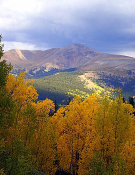 Marty Koch - Mountain Fall