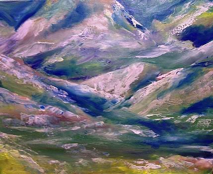 Patricia Taylor - Mountain Gorge Italian Alps
