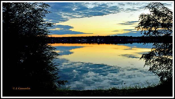 Mountain Lake Sunset, Tree Silhouettes by A Gurmankin